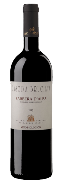 Barbera Doc Biologico