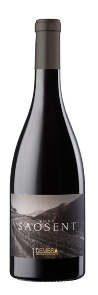 Vigna di Saosent Pinot Nero